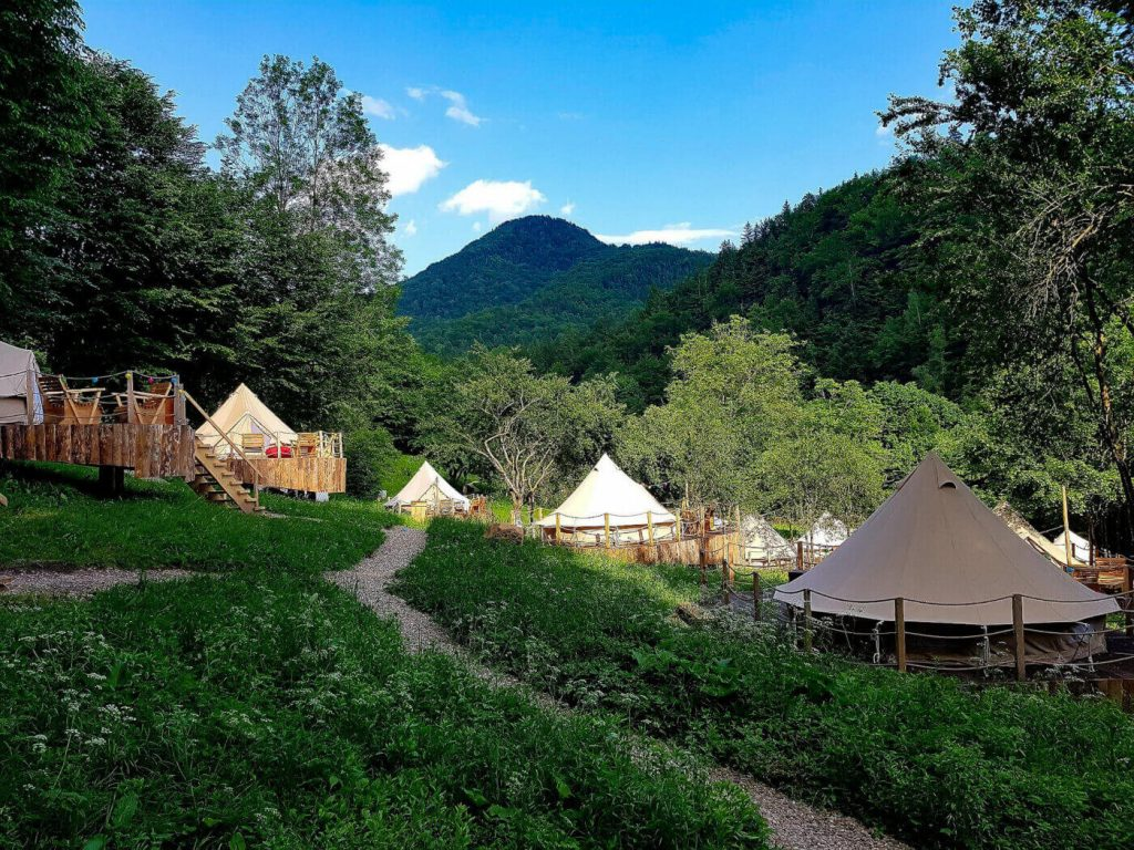 Glamping tents in meadow