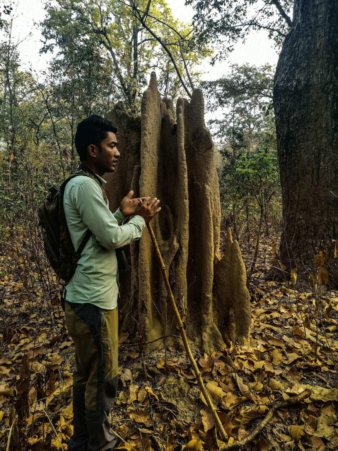 Local guide next to termite house